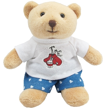 Teddy bear with muay thai